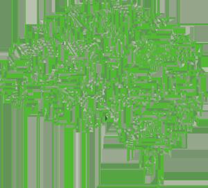 Was ist KI? - Gehirn mit Schaltkreisen
